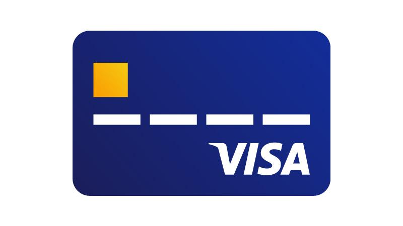 Info For Non-FI Partners   Visa